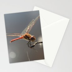 Dragon fly photo Stationery Cards
