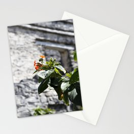 Touch of color in Tulum Stationery Cards