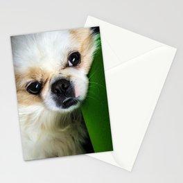 Pekingese Stationery Cards