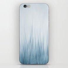 winter III iPhone & iPod Skin