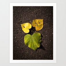 Leaf Love No.2 Art Print