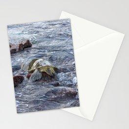 turtlebutt Stationery Cards