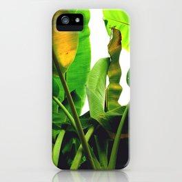 p a l m s iPhone Case