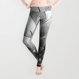 Black and White Cactus Succulent Leggings