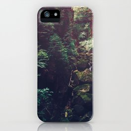 Waterfall Wilderness iPhone Case