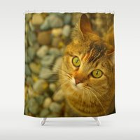 kitty Shower Curtains featuring Kitty by Nature In Art...