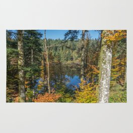 Lake in French forest Rug