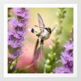 Hummingbird Whimsy Art Print