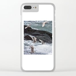 Gulls shop for Dinner Clear iPhone Case
