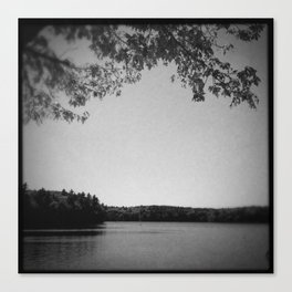 On the bank of Walden Pond Canvas Print