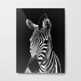 Zebra Black Metal Print