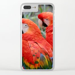 Scarlet Macaws Clear iPhone Case