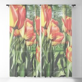 Tulips in the park Sheer Curtain