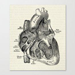 Vintage Anatomy Heart Medical Illustration Canvas Print