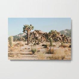 Shapes and Sizes- Joshua Tree Metal Print