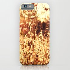 The Golden Hour iPhone 6s Slim Case