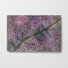 Organic Space and Structure Metal Print