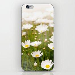 White herb camomiles clump iPhone Skin