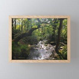 Where Fairies Live Framed Mini Art Print