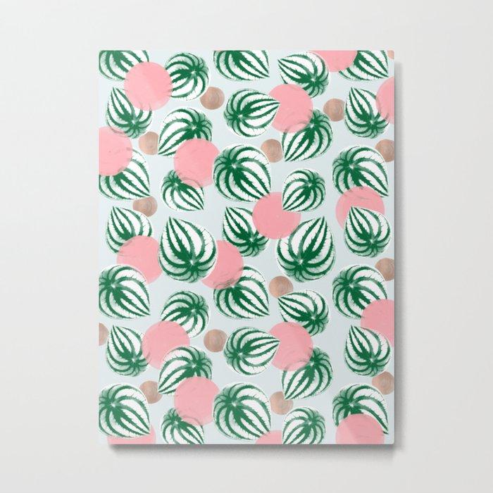 Watermelon Peperomia Pattern Metal Print