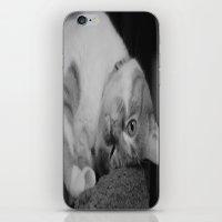 simba iPhone & iPod Skins featuring Simba  by Kai M Brinkman
