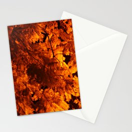 Hot evening Stationery Cards