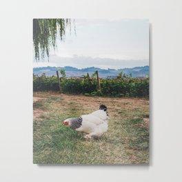Farm Chicken Metal Print