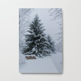 New England Winter Metal Print