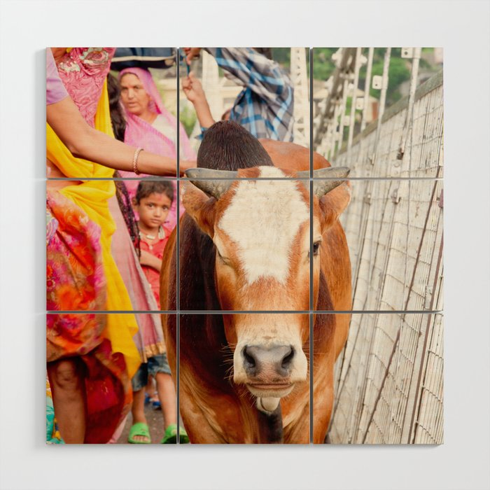 Holy cow, India Wood Wall Art