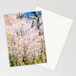 Blooming Trees In The Park On A Sunny Day Of Spring Stationery Cards