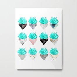 Assorted Succulents Metal Print