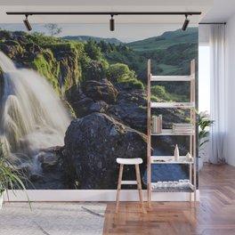 Grassy Falls Wall Mural