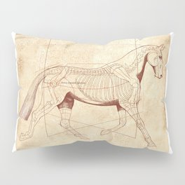 Da Vinci Horse: The Trot Revealed Pillow Sham