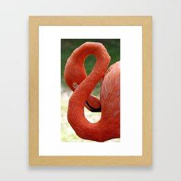 Flamingo 8 Framed Art Print