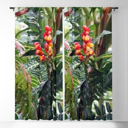 Tropical Heliconia Flowers 03 Blackout Curtain