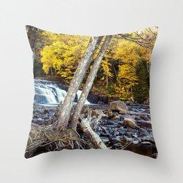 at buttermilk falls Throw Pillow