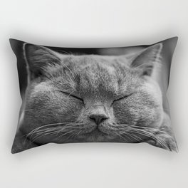 Cat, Cats - Love Cats Rectangular Pillow