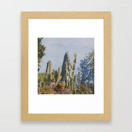 Beach Plants Framed Art Print