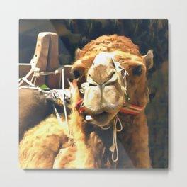 Middle Eastern Camel Metal Print