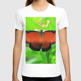 Butterfly With Wings Spread T-shirt