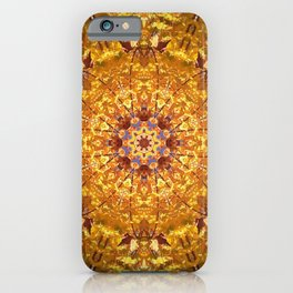 Will Power iPhone Case