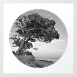 Desert Island Disc Art Print