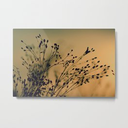 In a Field Metal Print