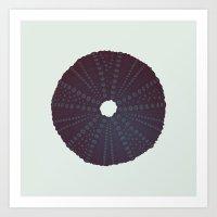 Sea's Design - Urchin Skeleton (Black) Art Print