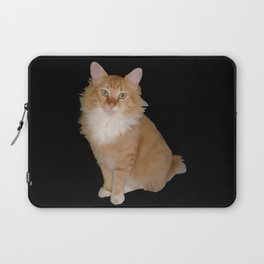 Jack Laptop Sleeve