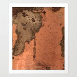 Tarnished Copper rustic decor Art Print