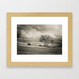 Solitude Framed Art Print