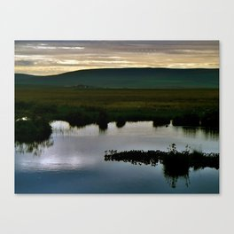 Twilight Canvas Print
