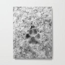 Paw Print in Snow Metal Print