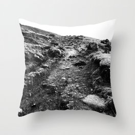 Urban Decay 6 Throw Pillow